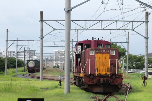 120811仮屋川末端 (33)のコピー