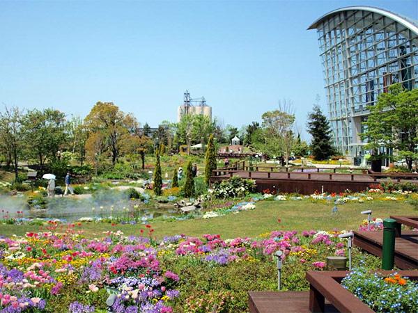 nagoyako-wird-flower-garden.jpg