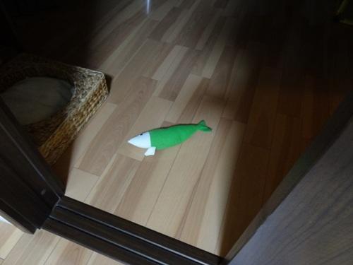 mysteriousfish7.jpg