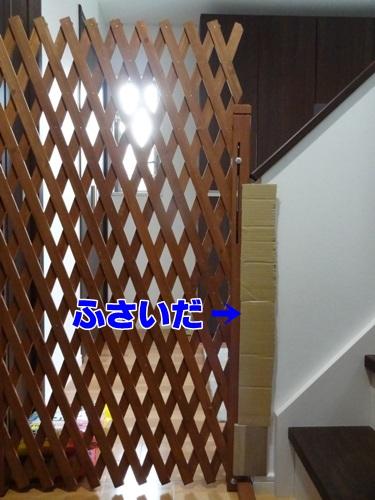 tugofwar4_text.jpg