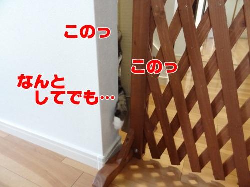 tugofwar5_text.jpg