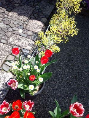 2012_0415_104757-DSC_0306.jpg