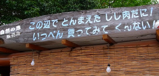 120711船明ダム湖脇-1