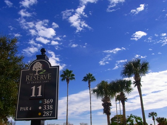 120113The Reserve-2