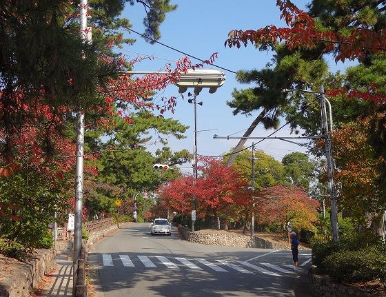 121108夙川