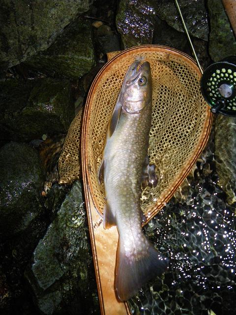 1岩魚120721