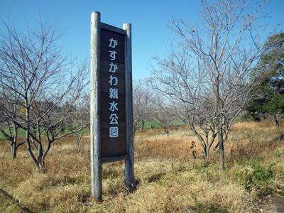 粕川親水公園