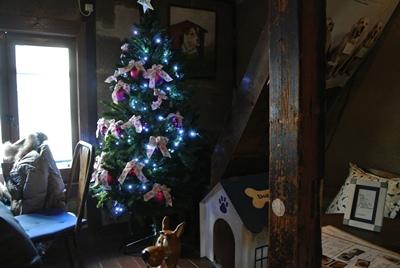 12.29大きなクリスマスツリー