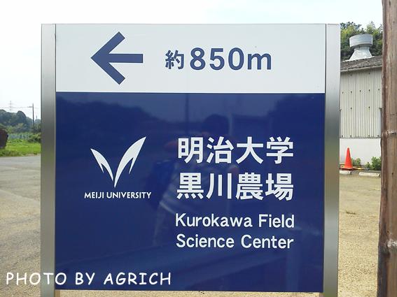 Meiji-Kurokawa