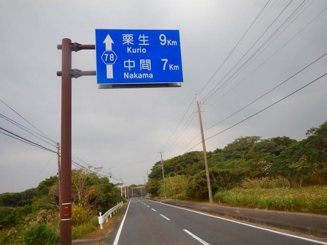 203日目(1) (32)