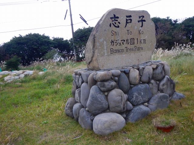 203日目(1) (114)