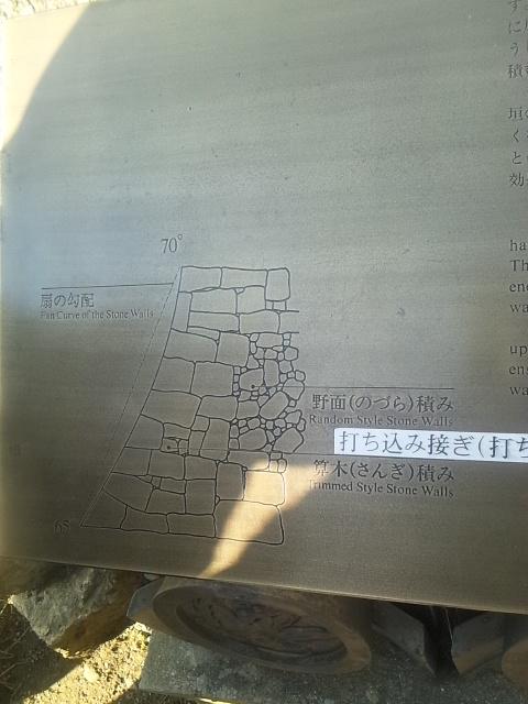 DVC130101siro (4)