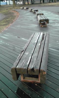 雨上がりベンチ