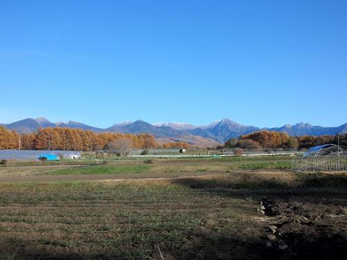 20121108_10.jpg