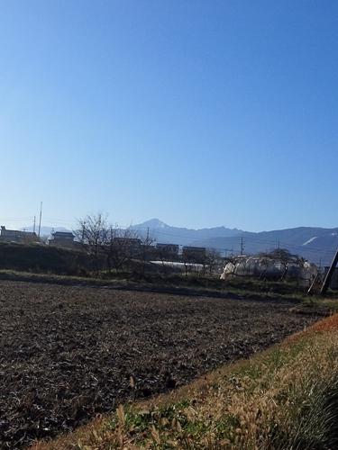 20121116_5.jpg