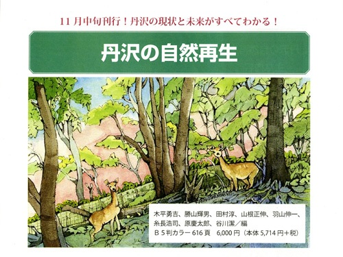 丹沢の自然再生1