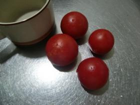 7月6日トマト