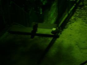 8月5日街灯の「下で