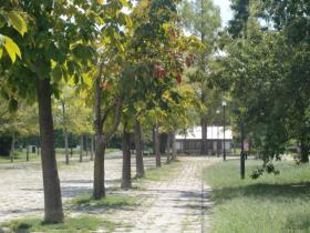 9月25日公園