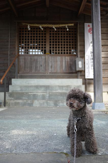 fusuya130423_6.jpg