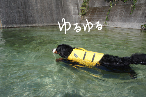 kawakota1.jpg