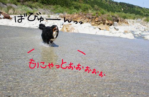 monyatto_20120516223532.jpg