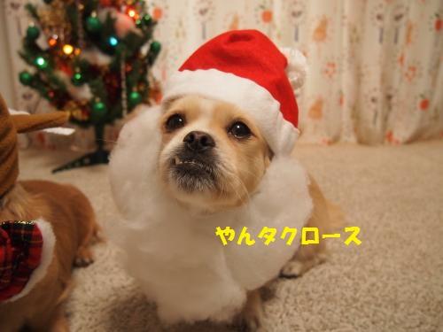 002_convert_20131225212349.jpg