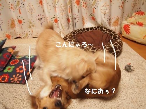 004_convert_20131228222115.jpg