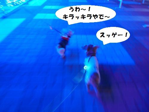 010_convert_20131224163104.jpg