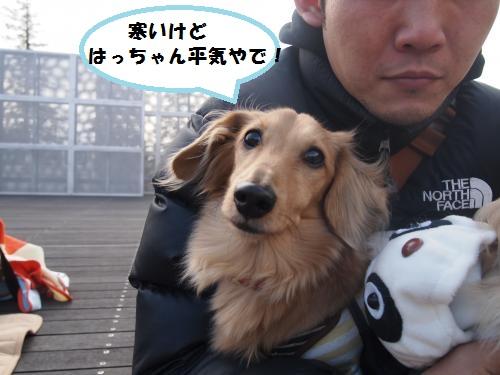 020_convert_20131216212836.jpg