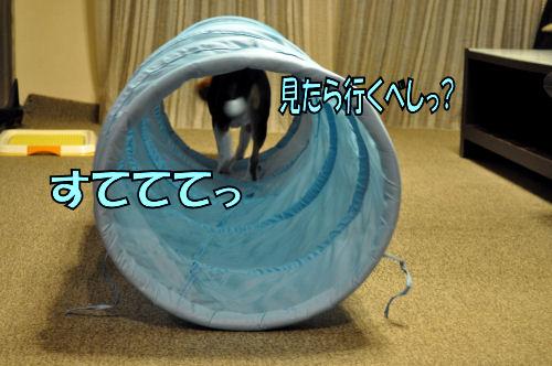 2012090302.jpg