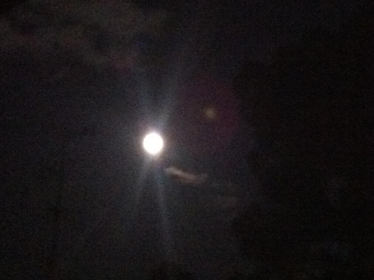 月を取りに