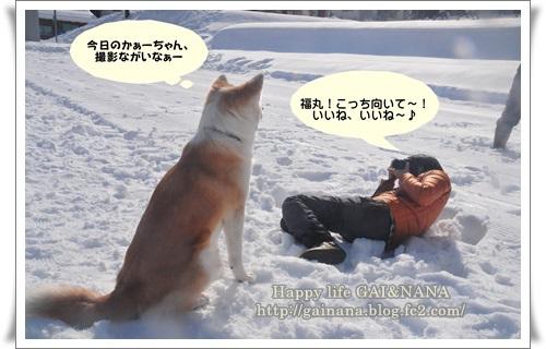 35_20140106011327ec9.jpg