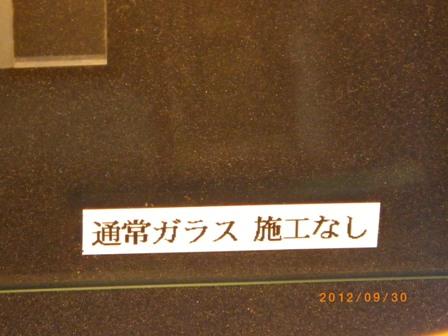 IMGP1067.jpg