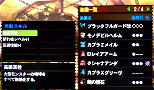 MH4G_05_03.jpg