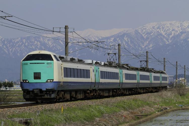 Nigata485 177 (750x500)