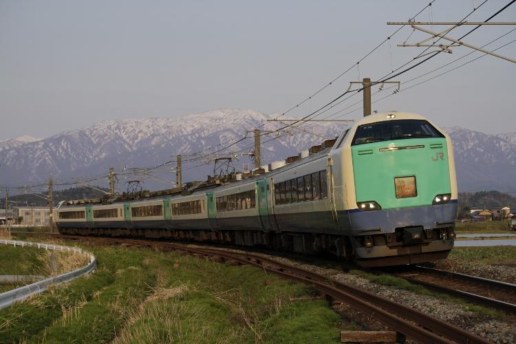 Nigata485 201 (750x500)