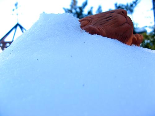 雪うさぎー2