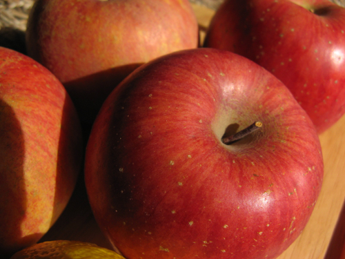 りんご-サンふじ