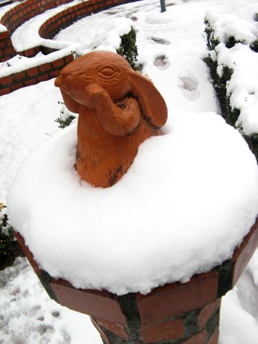季節はずれの大雪ー9