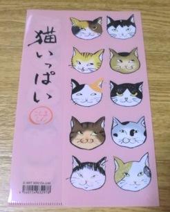 猫いっぱい