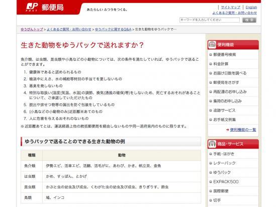 l_ys_hato01.jpg