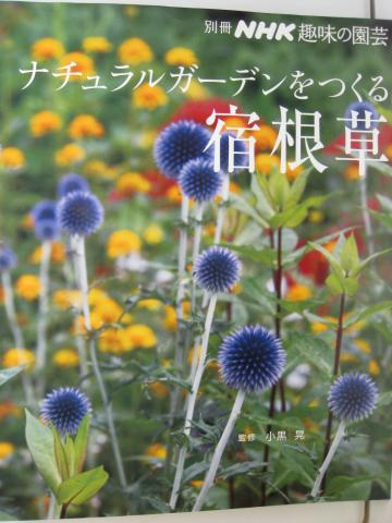 IMG_3475_縮小