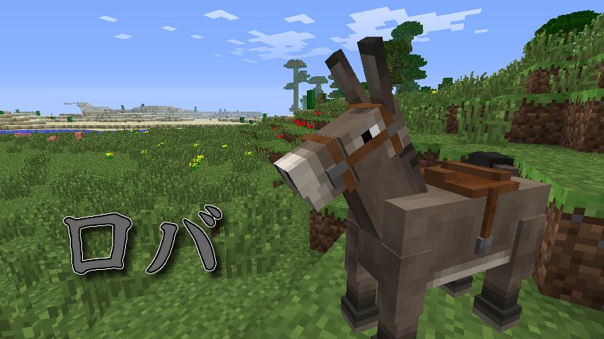 horse a manual-6