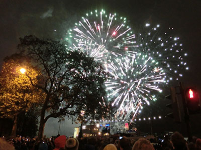 LMS_fireworks201401.jpg