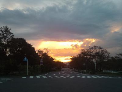 日本平の夕日