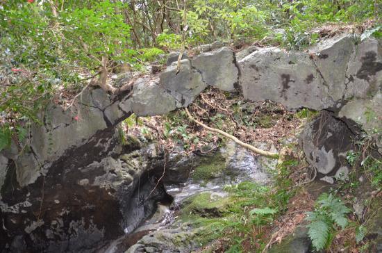 溶岩流は27日の夜半に海岸に達した 石の反り橋 桜株近く 椿園 海浜植物群落はY3L  動物園はY1L(安永溶岩流)