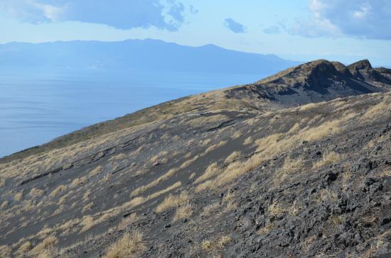 伊豆半島天城の万三郎岳 遠笠山が見える