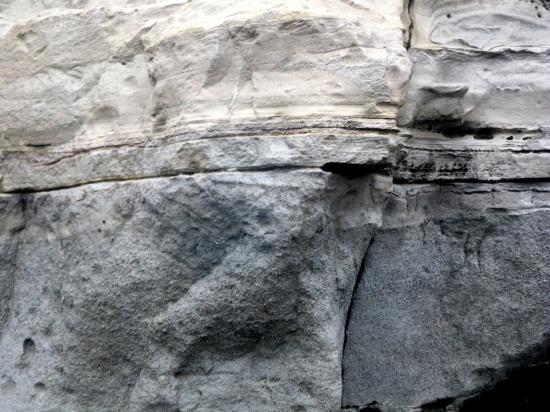 砂岩 泥岩互層