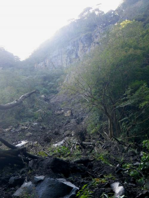 溶岩流上部右斜面からのラハール